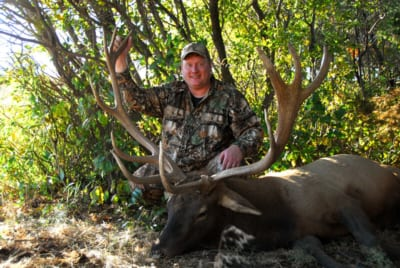 man posing with elk and horns