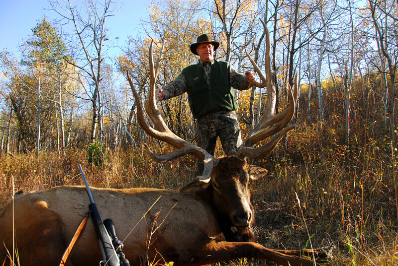 man posing with an elk and horns