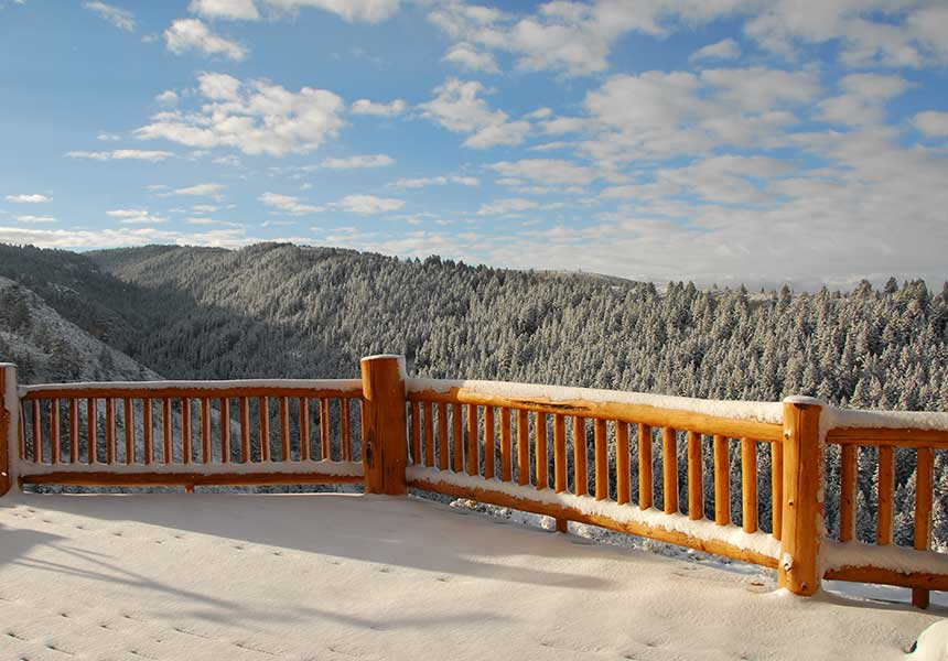 Vista view of forest hills