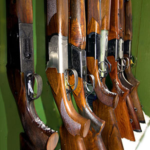 several shotguns in storage